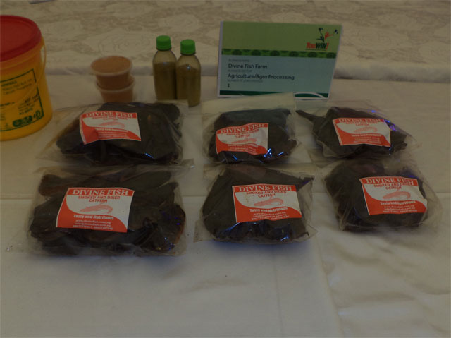 Processed and packaged fish on exhibit at the First YouWiN! Made in Nigeria Trade Exhibition