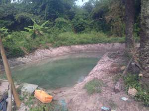 Earthen ponds in Ogun State, Nigeria