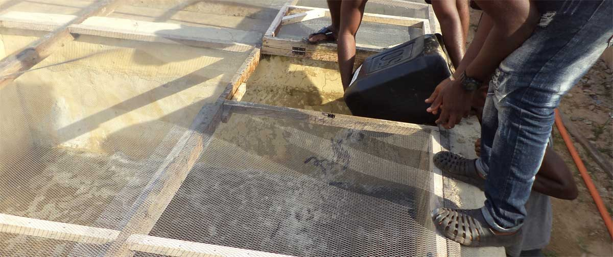 We delivered eight thousand juvenile catfish to brand new farmers in Lagos and Enugu